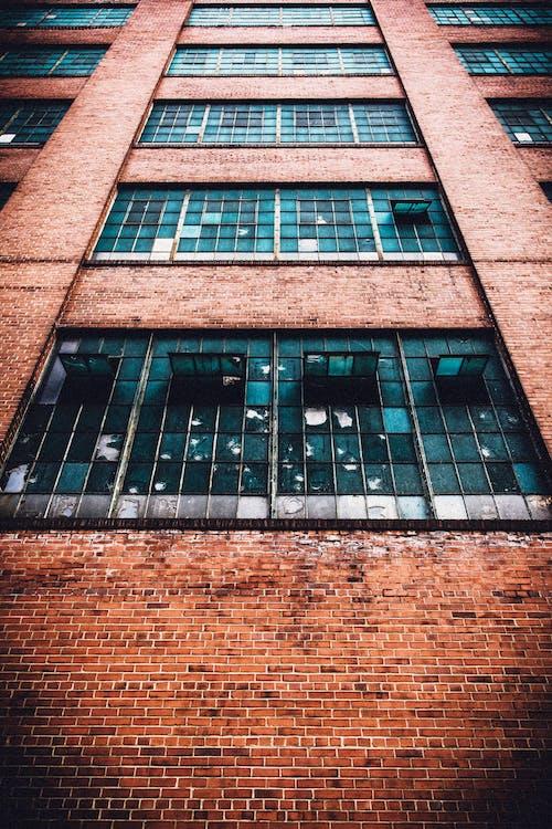 Gratis lagerfoto af fabrik, forladt, glasskår, mursten