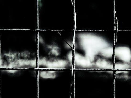 Free stock photo of bars, black & white, fence, jail