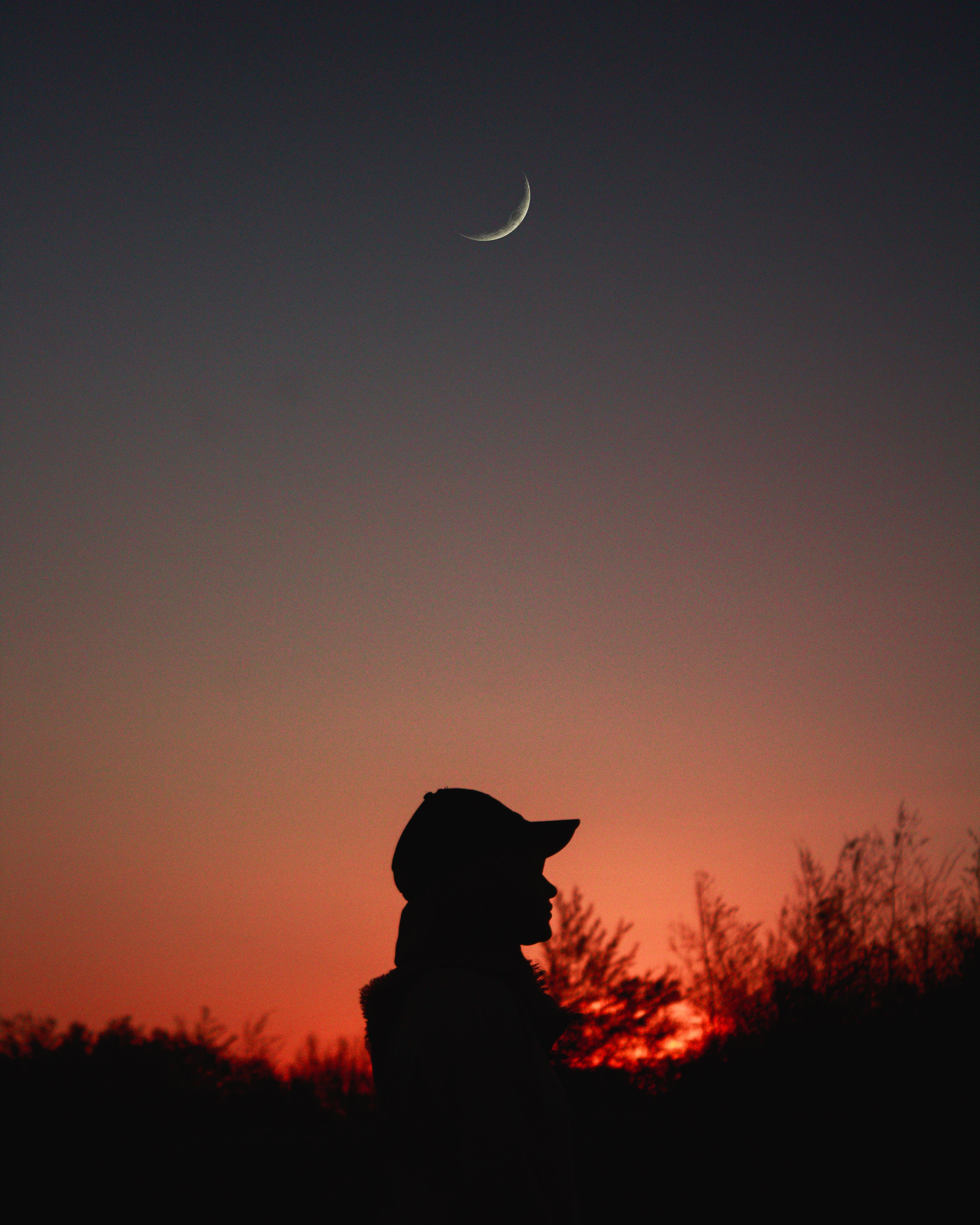 Gratis lagerfoto af aftenhimmel, bagbelyst, halvmåne, himmel
