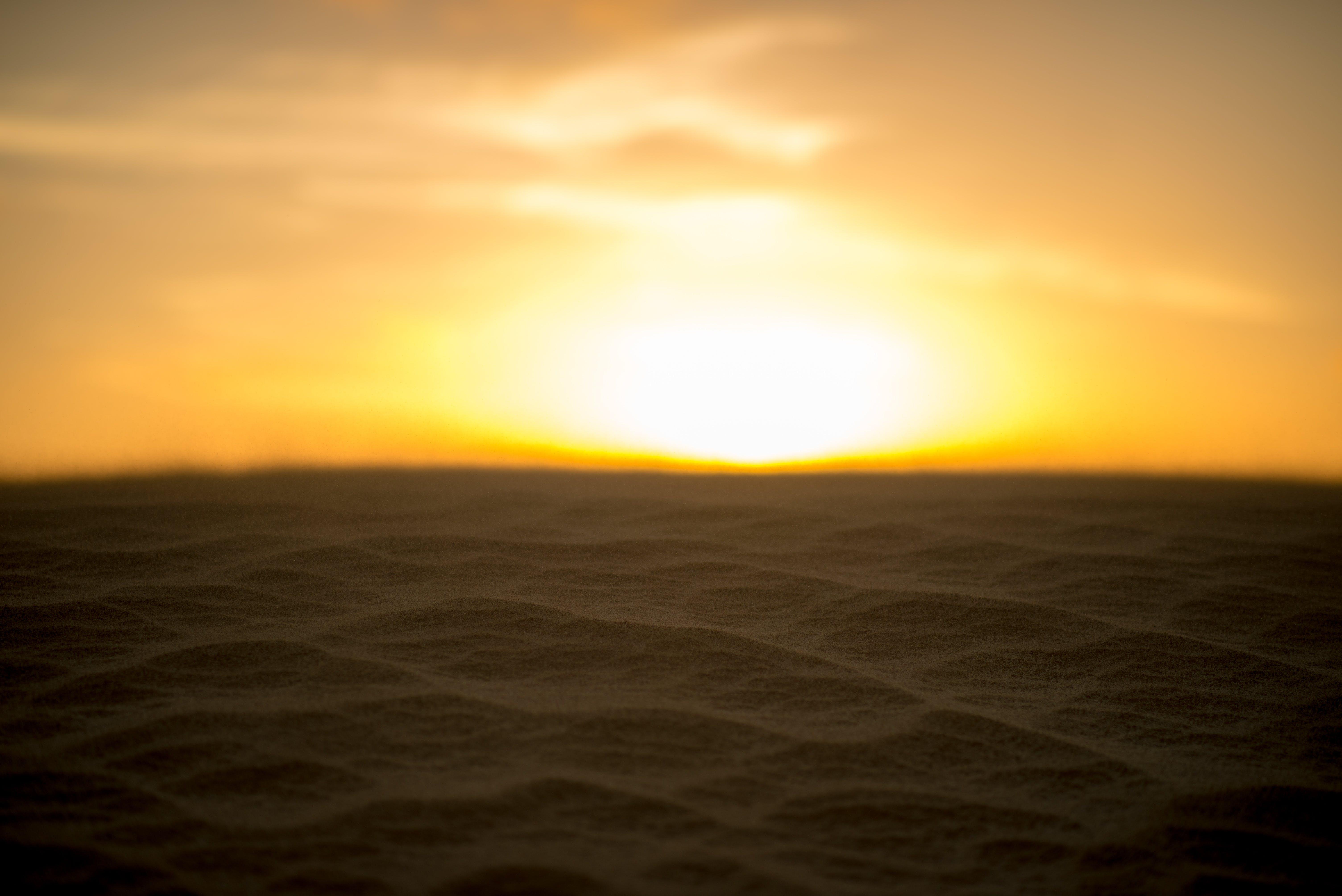Free stock photo of sunset, sand, sun