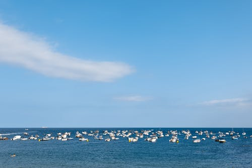 Free stock photo of blue sky, boats, brava, clouds