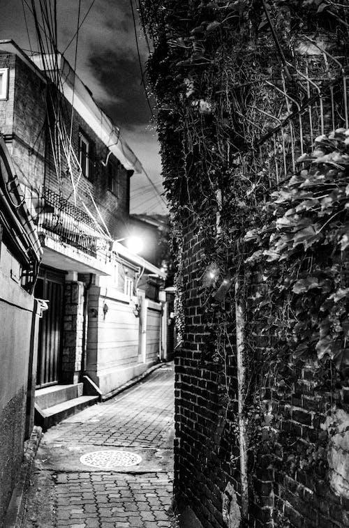 Foto d'estoc gratuïta de arquitectura, blanc i negre, carrer, carrer de llambordes