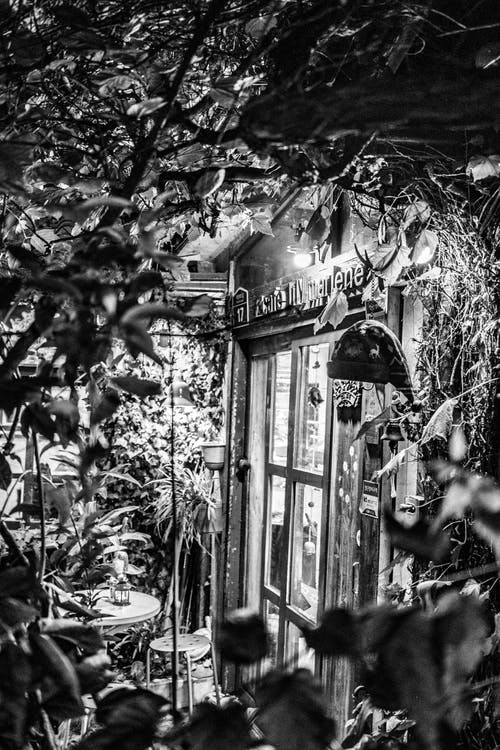 คลังภาพถ่ายฟรี ของ ประตู, ป้าย, ไฟ