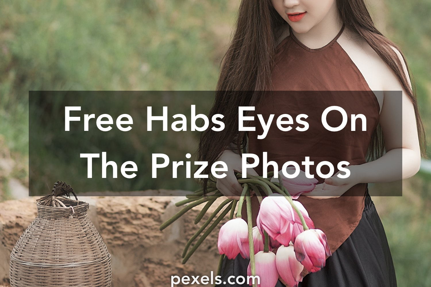 1000+ Engaging Habs Eyes On The Prize Photos · Pexels · Free Stock