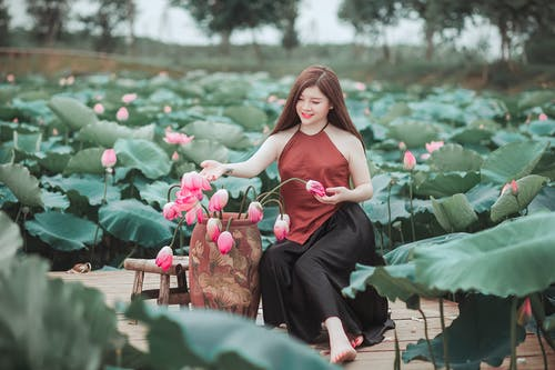 Fotos de stock gratuitas de arboles, asiática, bonito, chica asiática