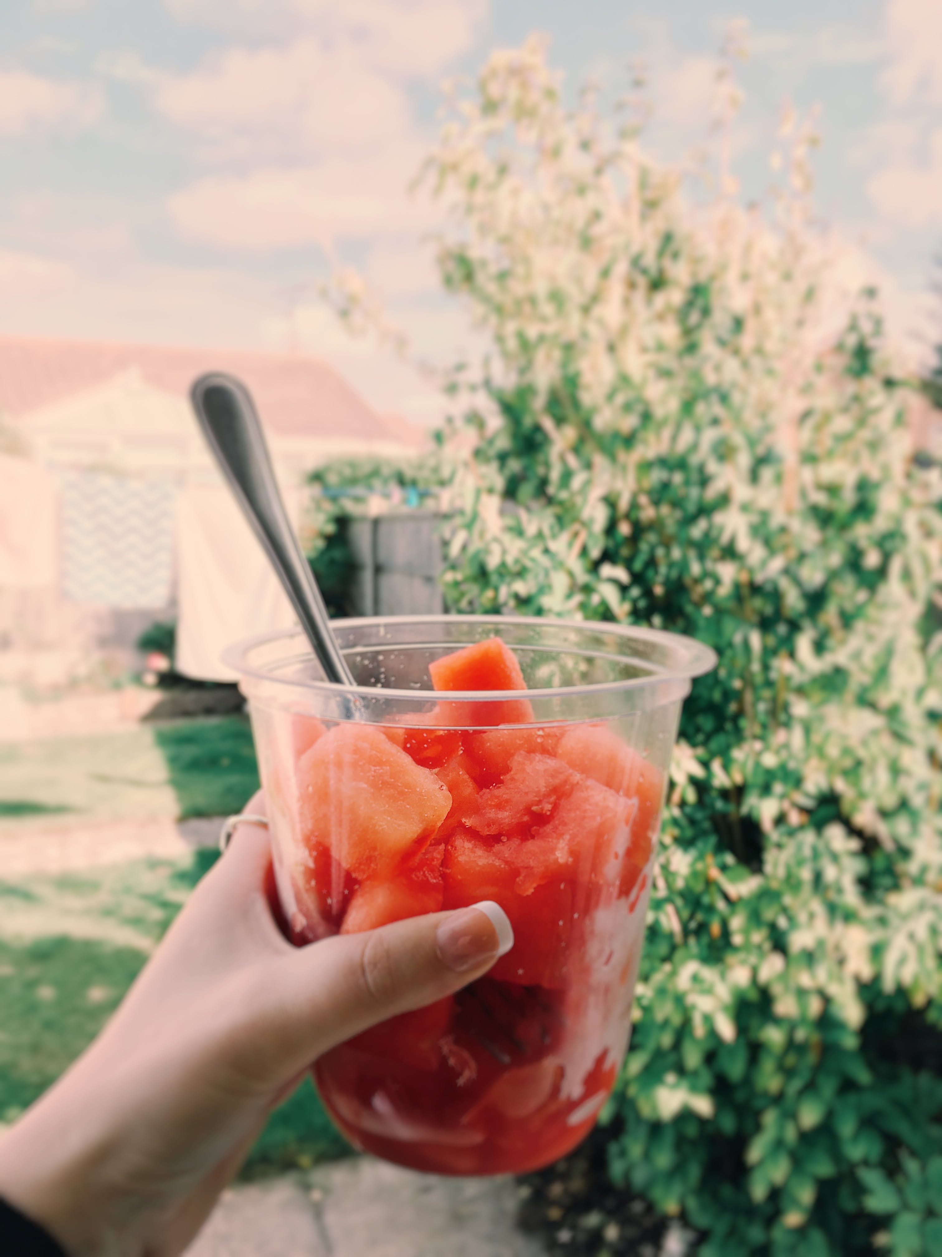 Person Holding Cup With Fresh Fruit