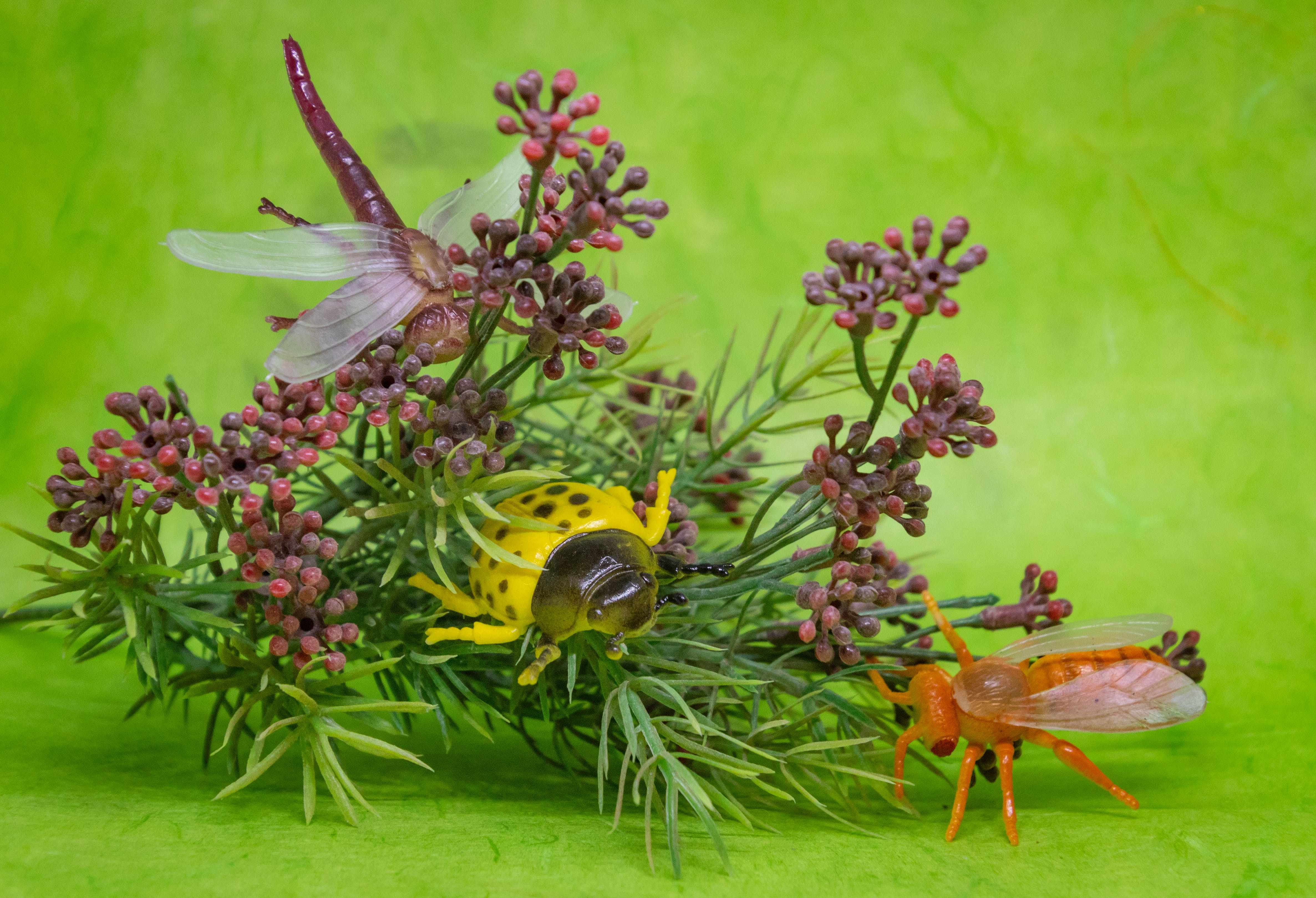 Plastic Insect Toys