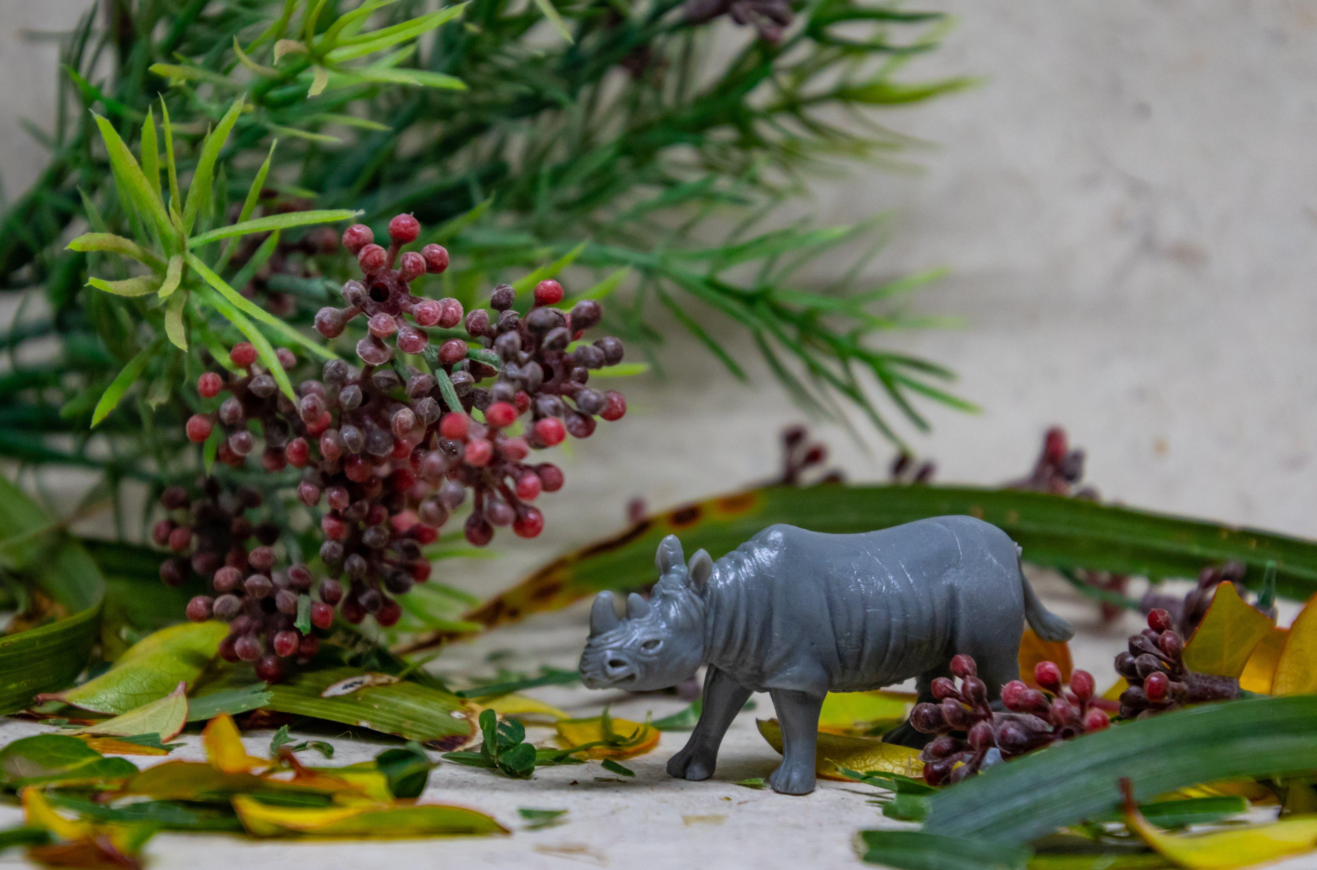 Rhino Figurine