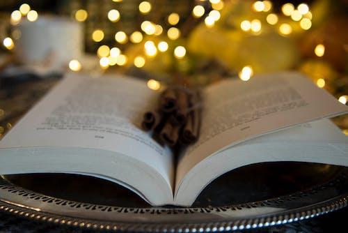 Free stock photo of books, cinnamon sticks, fairy lights, fall aesthetic