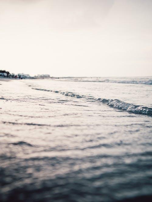 Foto stok gratis air, kedalaman lapangan, laut, lautan