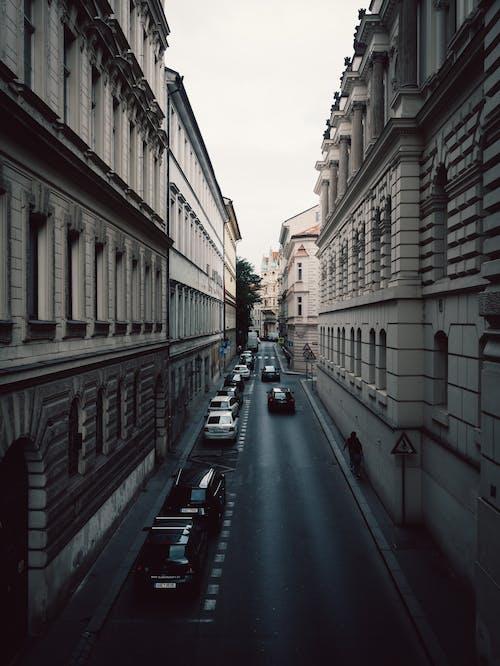 คลังภาพถ่ายฟรี ของ กลางวัน, ตึก, ถนน, ยานพาหนะ