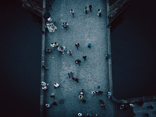 Top View Photography Of People
