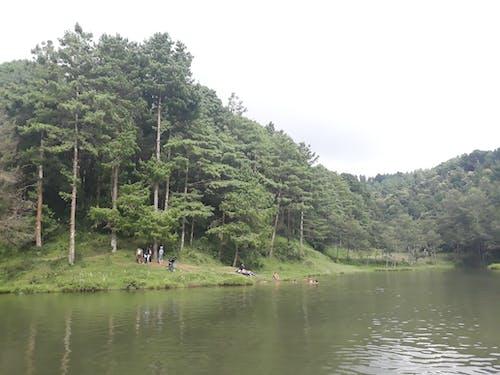 Foto profissional grátis de aldeia, bhaktapur, kalamasi, nagarkot