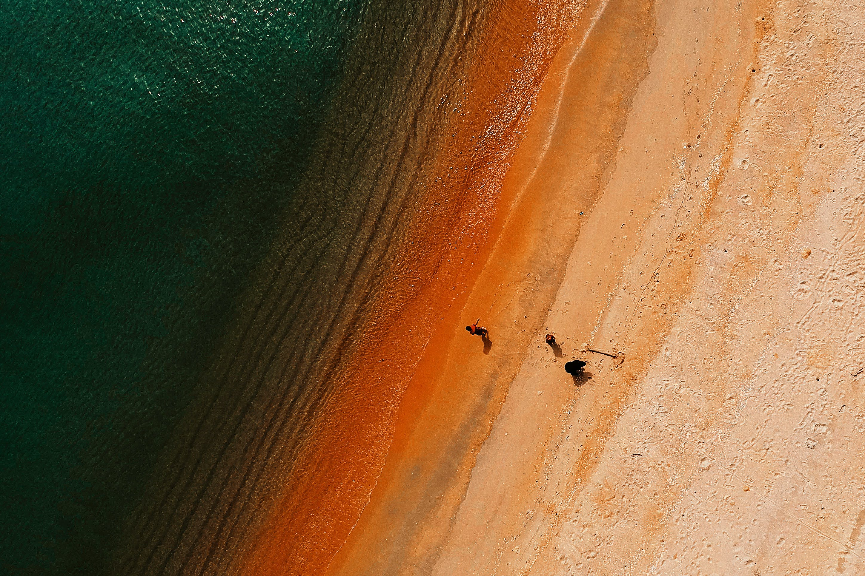 Aerial Photography of Group of People Near Body of Water