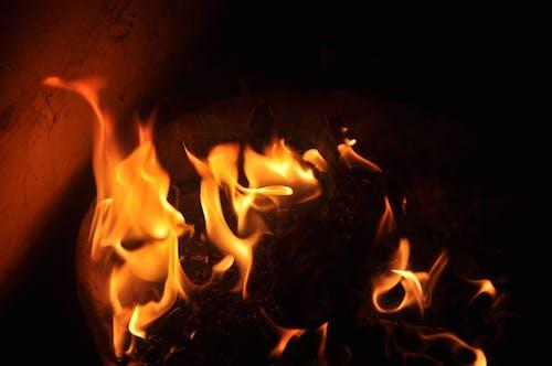 Foto d'estoc gratuïta de clareja, cremar, foc, retroil·luminat