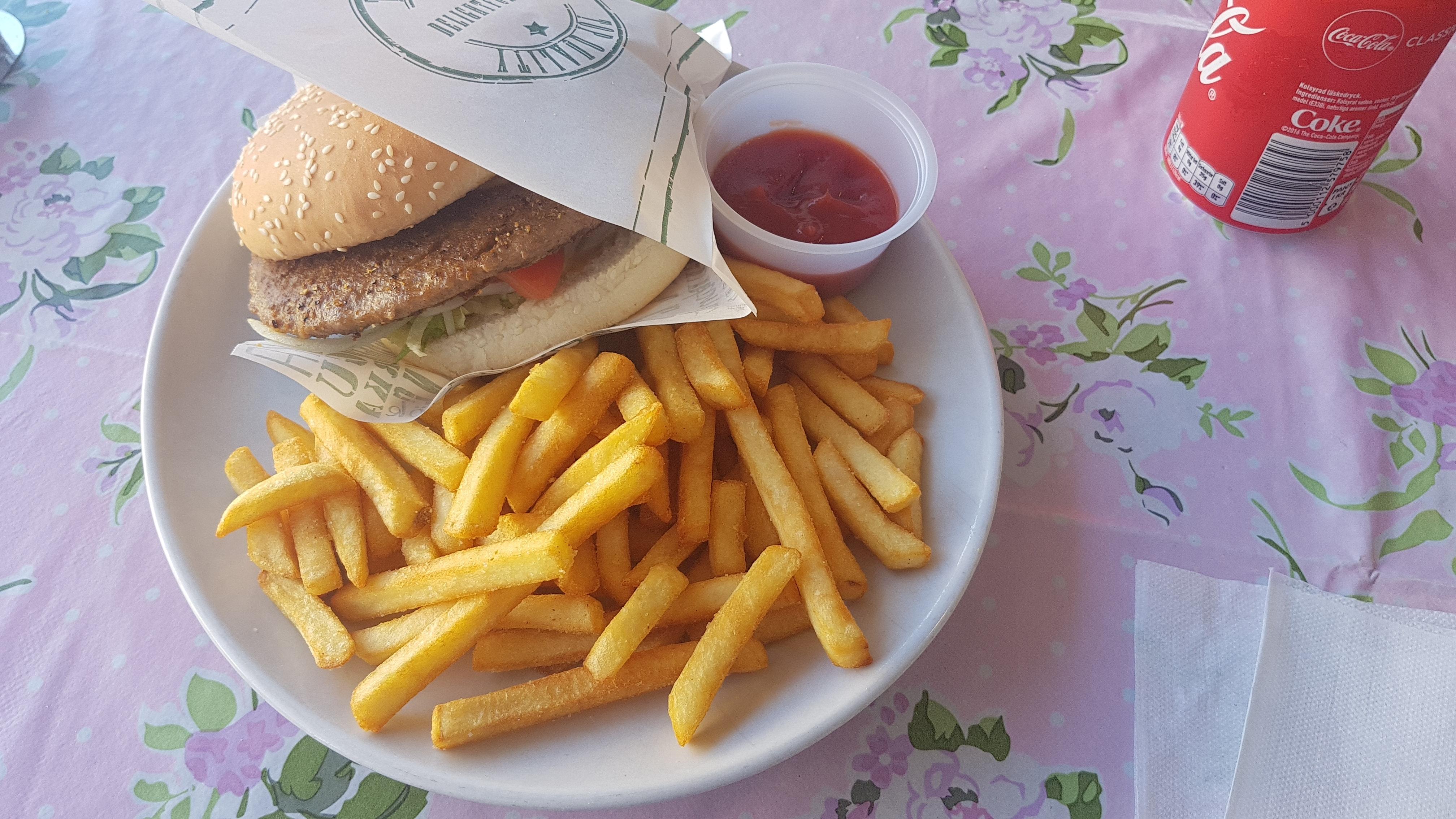 Free stock photo of chips, hamburger, meat