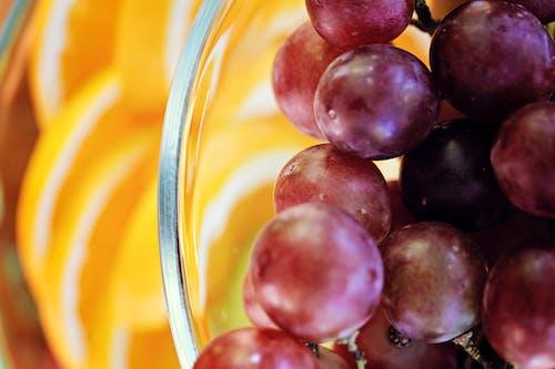 과일 그릇, 덩굴, 자주색 포도, 포도의 무료 스톡 사진