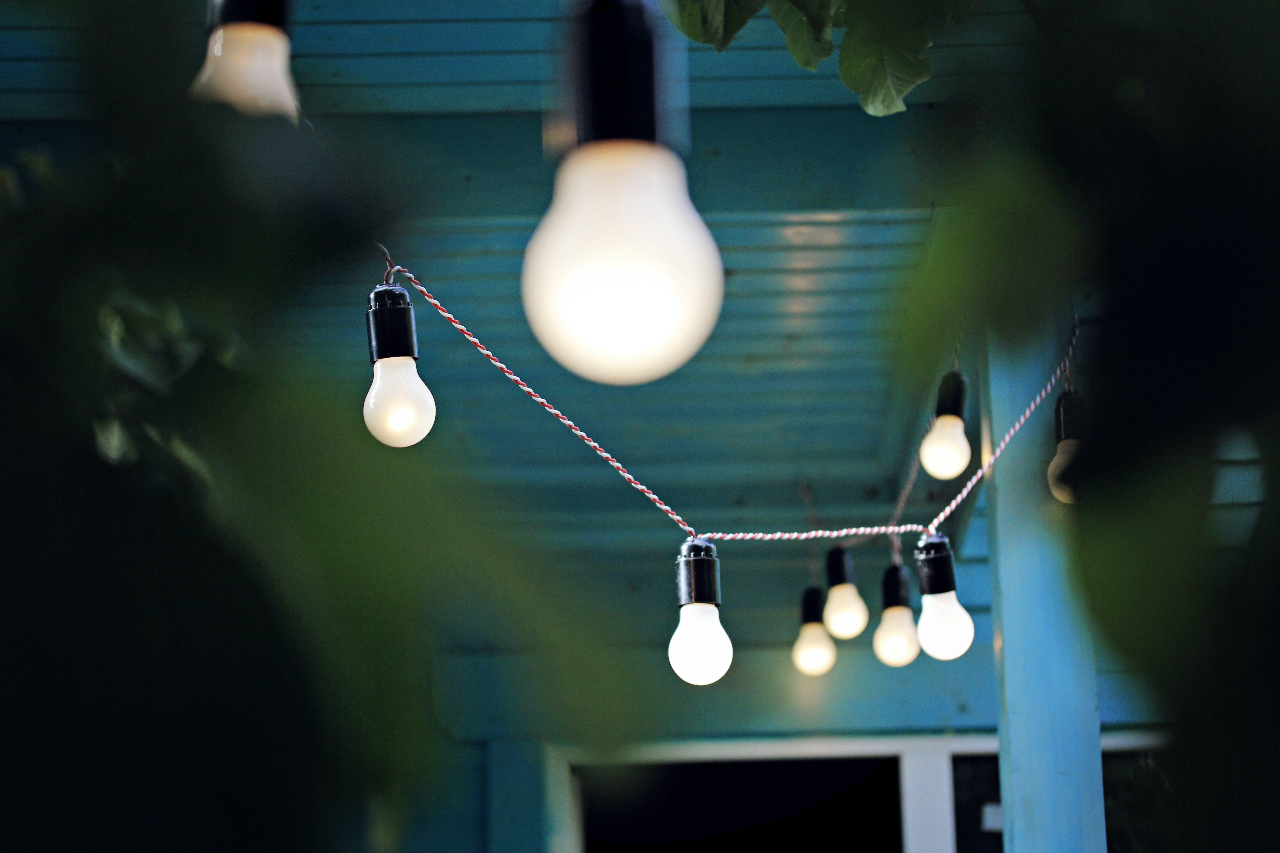 akşam, bahçe ışıkları, botanik bahçeler, doğa içeren Ücretsiz stok fotoğraf