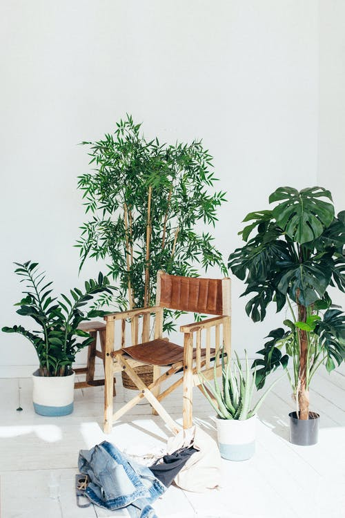 Brown Wooden Chair Surrounded by Plants