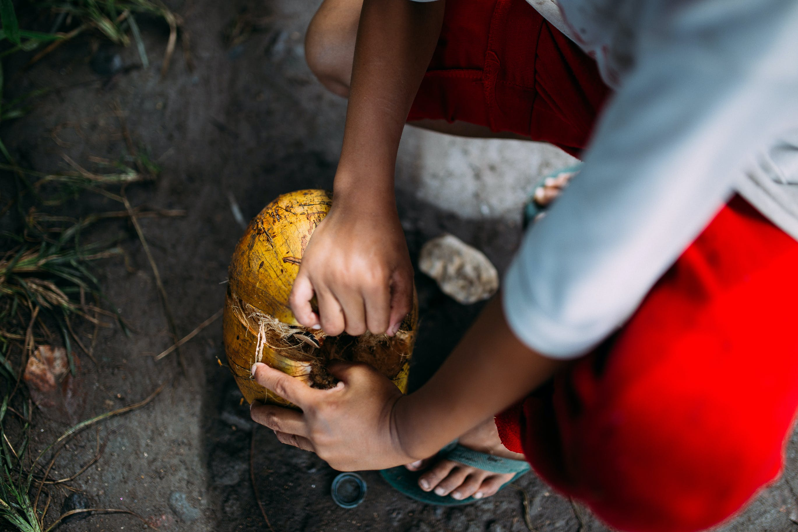Person Peeling a Coconut