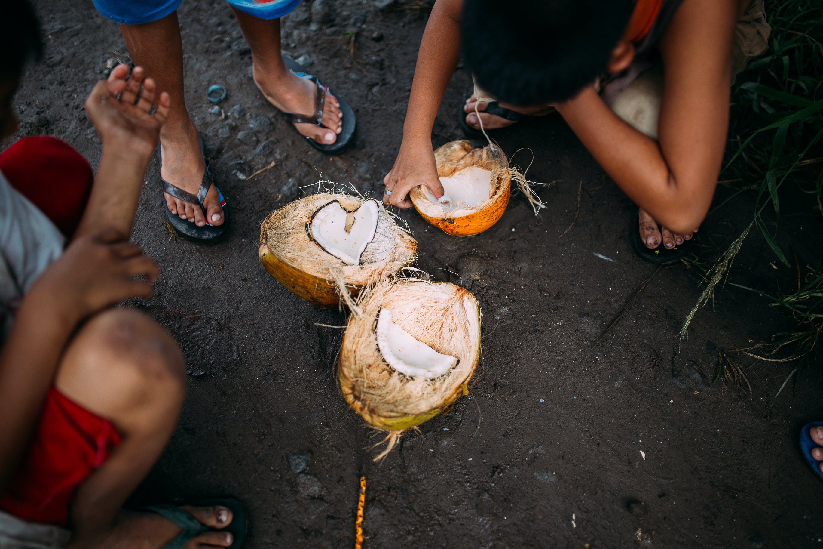 Three People Squatting Beside Coconut Fruit on Ground