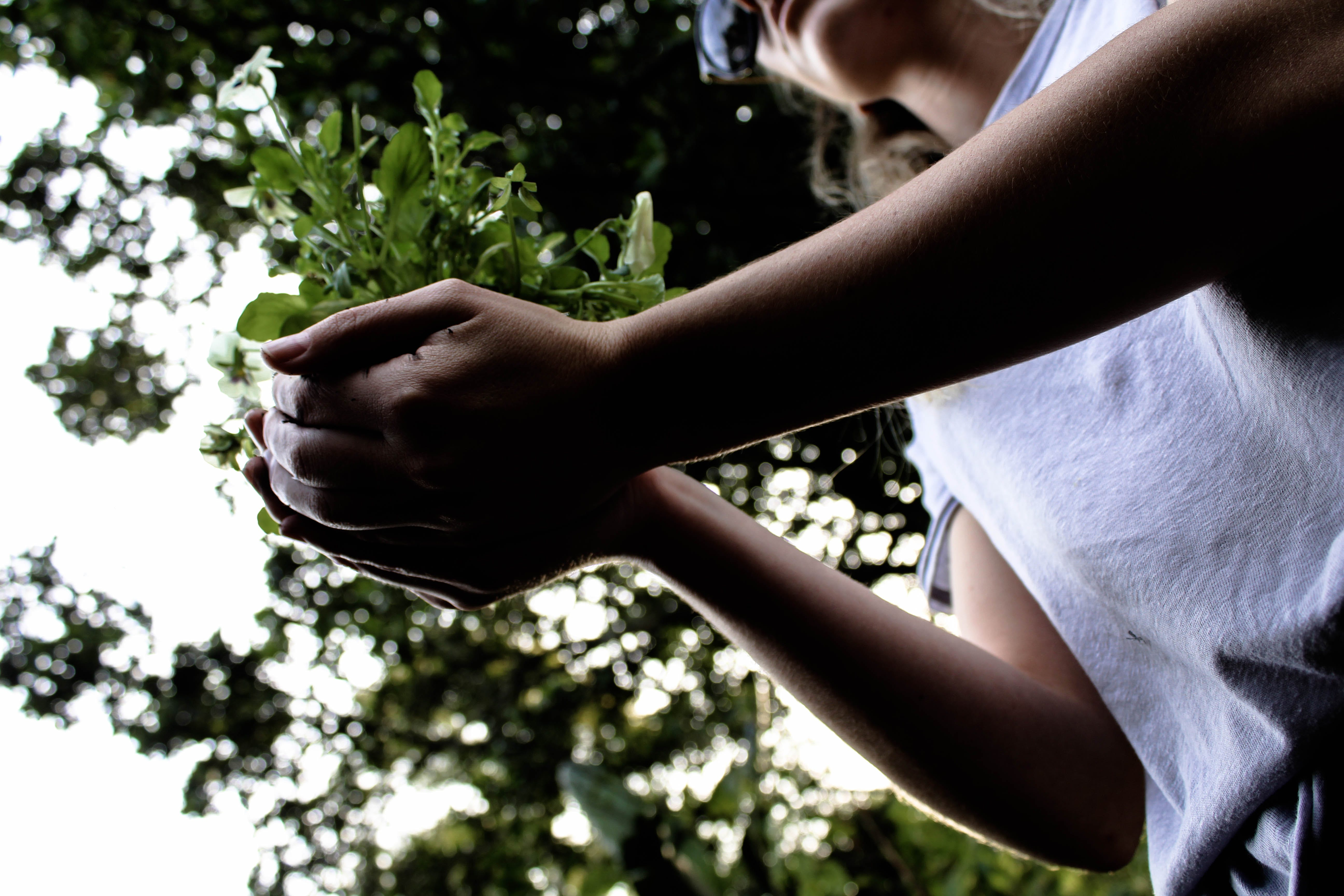 Woman Holding Plant
