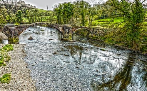 Бесплатное стоковое фото с речной ходдер