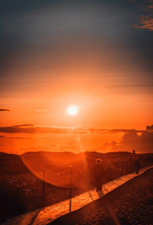 açık, akşam, arkadan aydınlatılmış, deniz içeren Ücretsiz stok fotoğraf