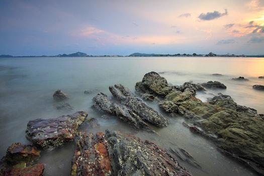 Free stock photo of sea, dawn, sky, water