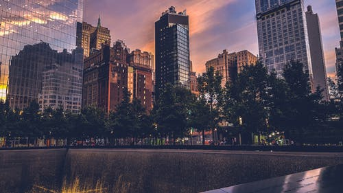 Ảnh lưu trữ miễn phí về các tòa nhà, cảnh quan thành phố, cao nhất, cây