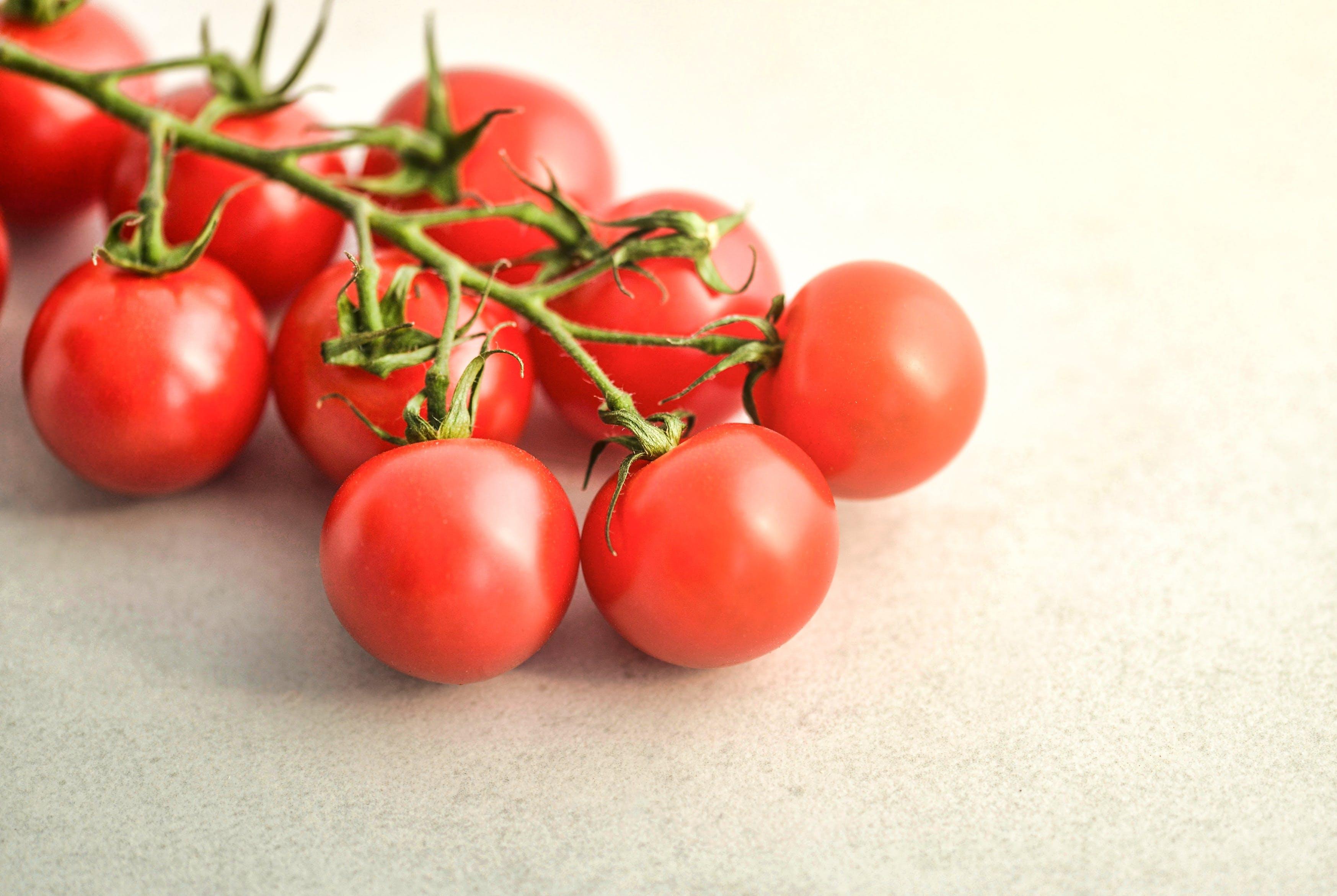 Ảnh lưu trữ miễn phí về cà chua, cận cảnh, chụp ảnh thực phẩm, món ăn