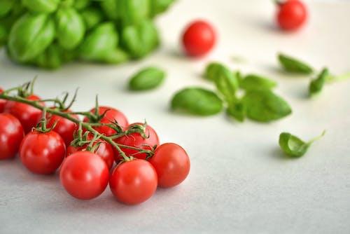 Ilmainen kuvapankkikuva tunnisteilla basilika, hedelmät, herkullista, kasvissyöjä