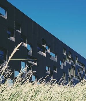 Free stock photo of building, grass, plant, architecture