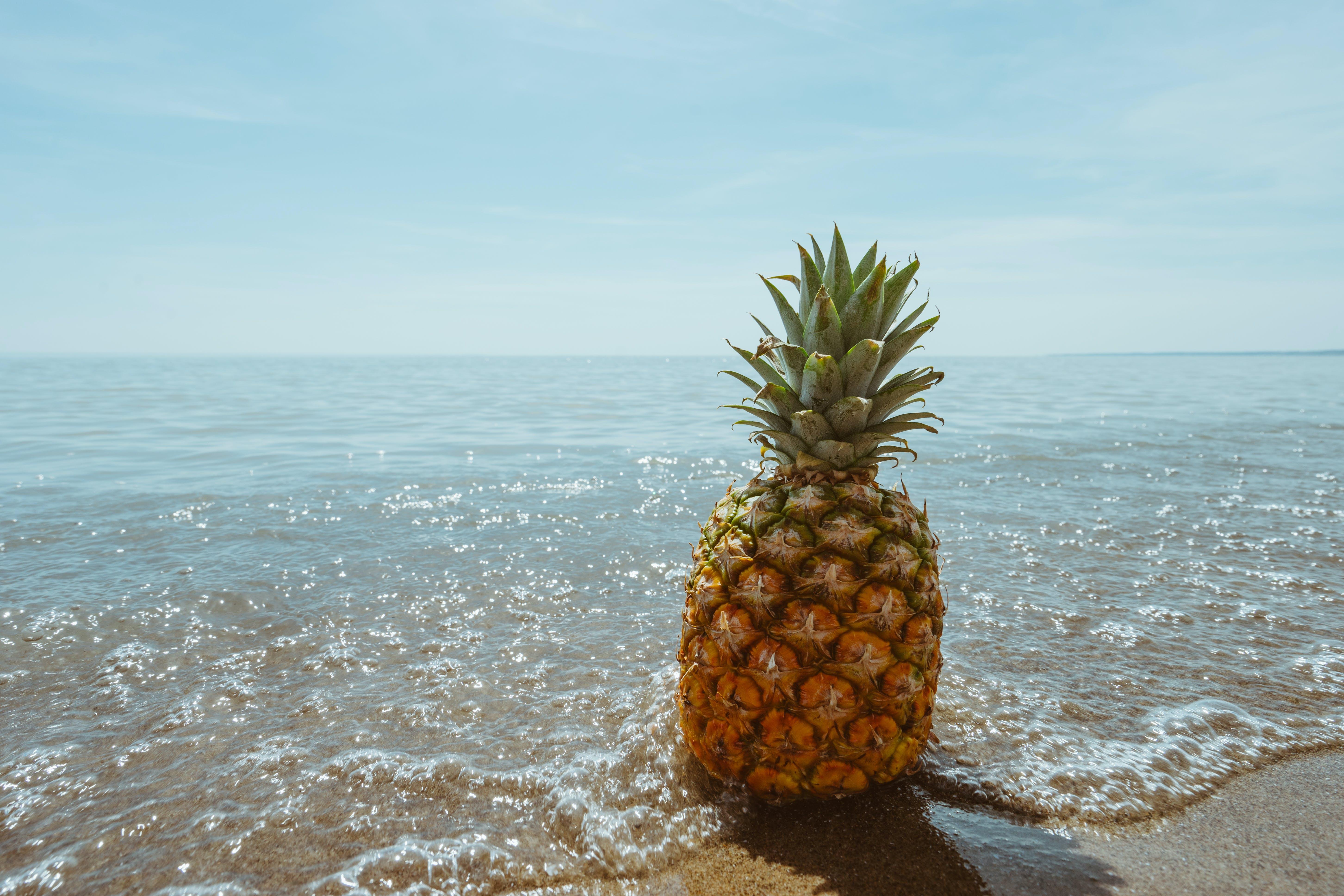 Foto profissional grátis de abacaxi, água, areia, beira-mar