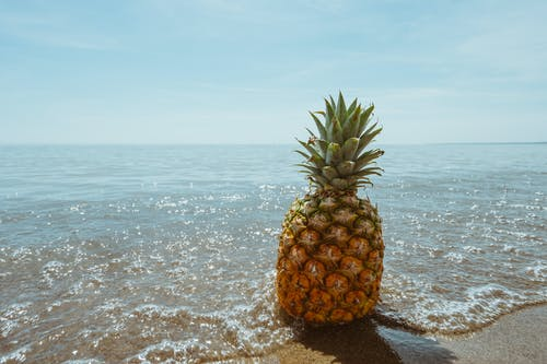 Pine Apple on Beach