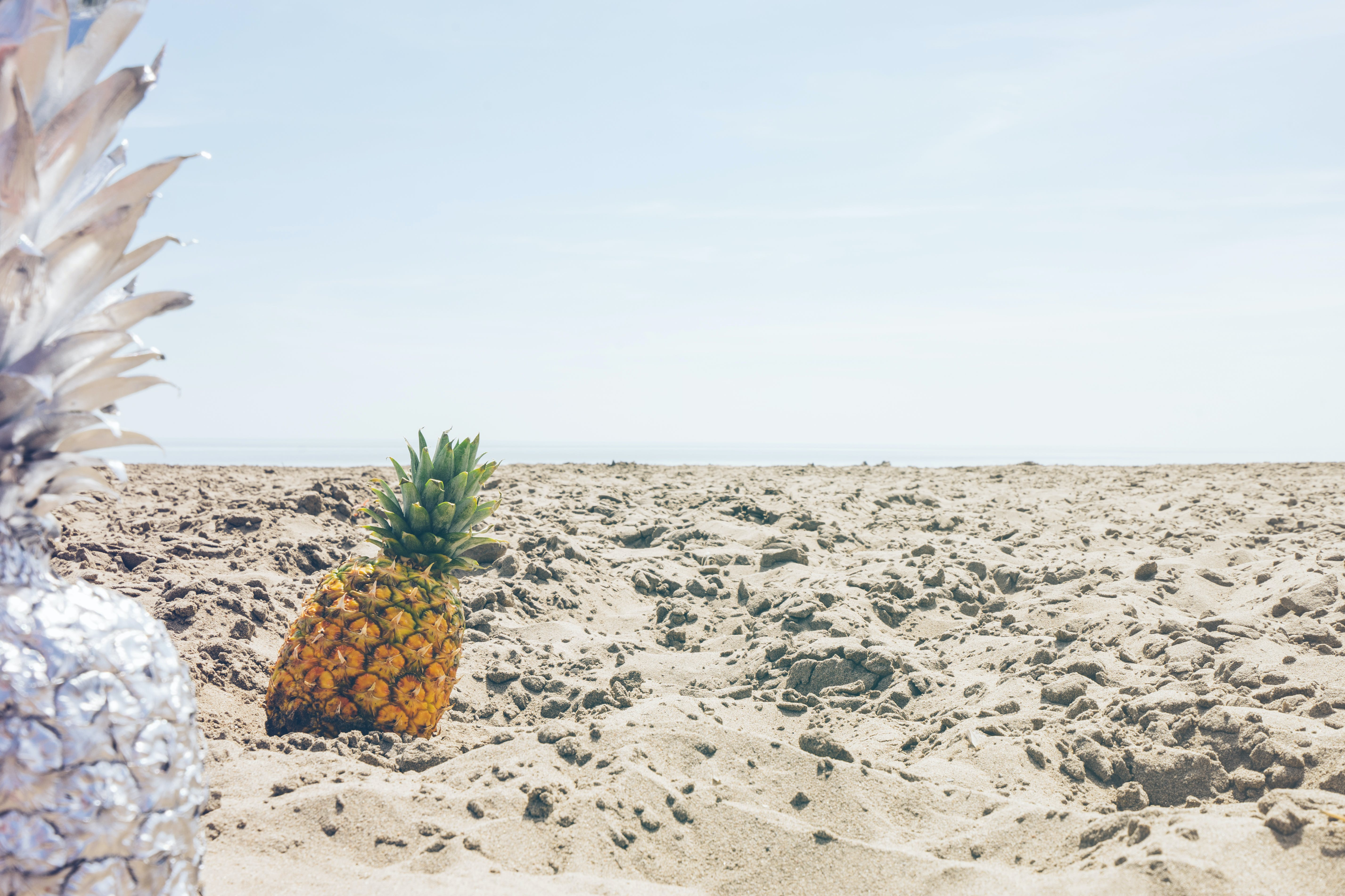 Two White and Yellow Pineapples on Brown Dirt