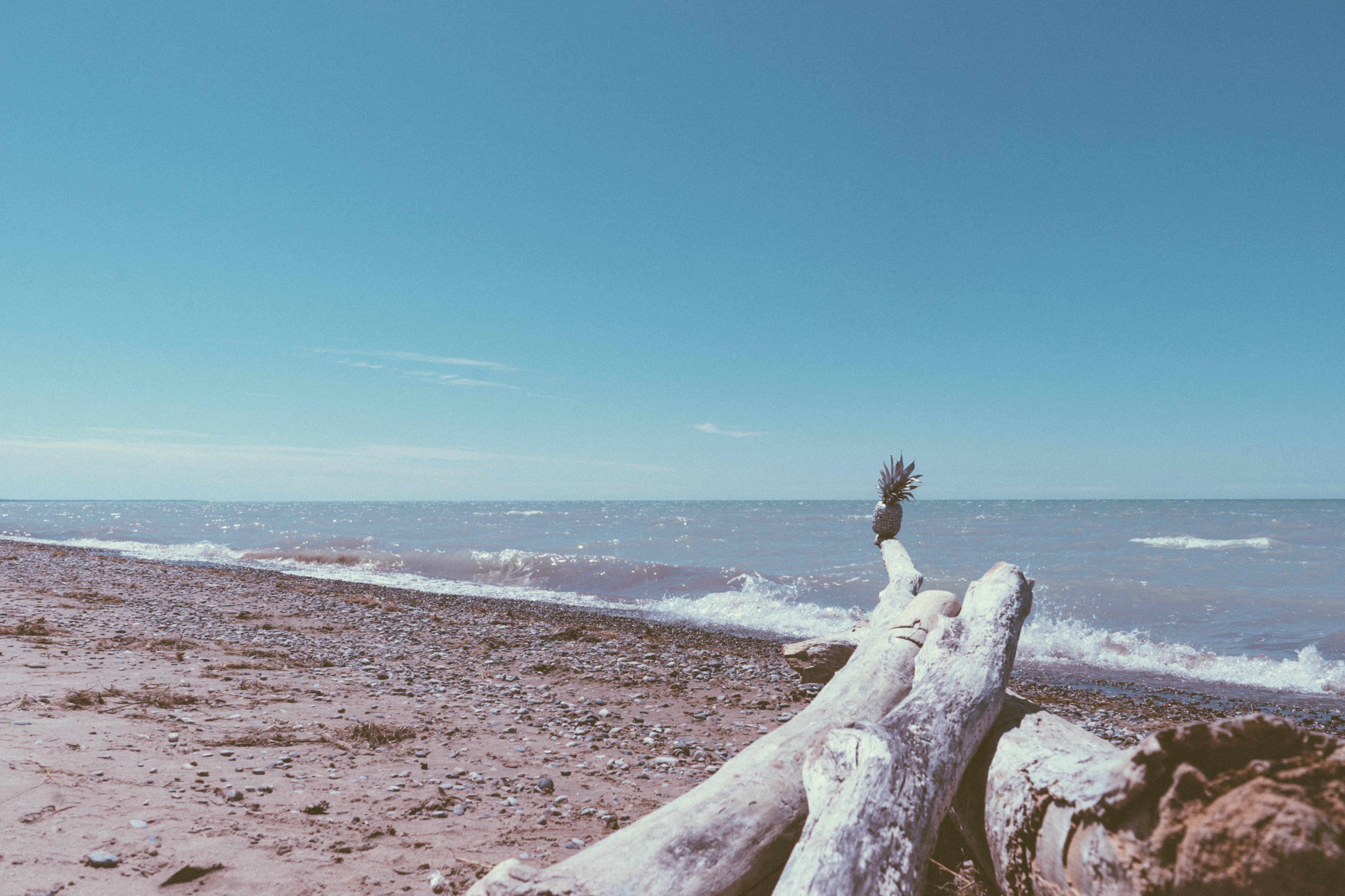 Free stock photo of beach, summer, waves, lake