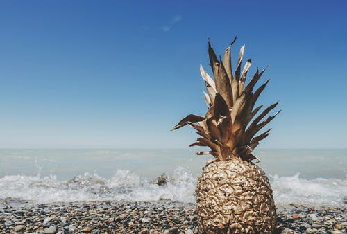 Brown Pineapple on Sand