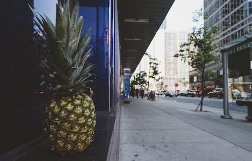 Pineapple on Window Sill Near Road