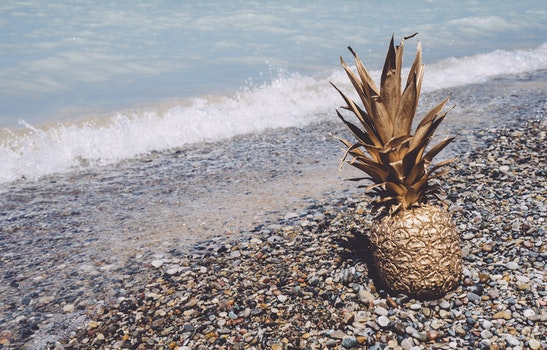 Free stock photo of beach, art, water, wave