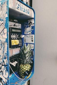 Free stock photo of pineapple, fruit, golden, phone