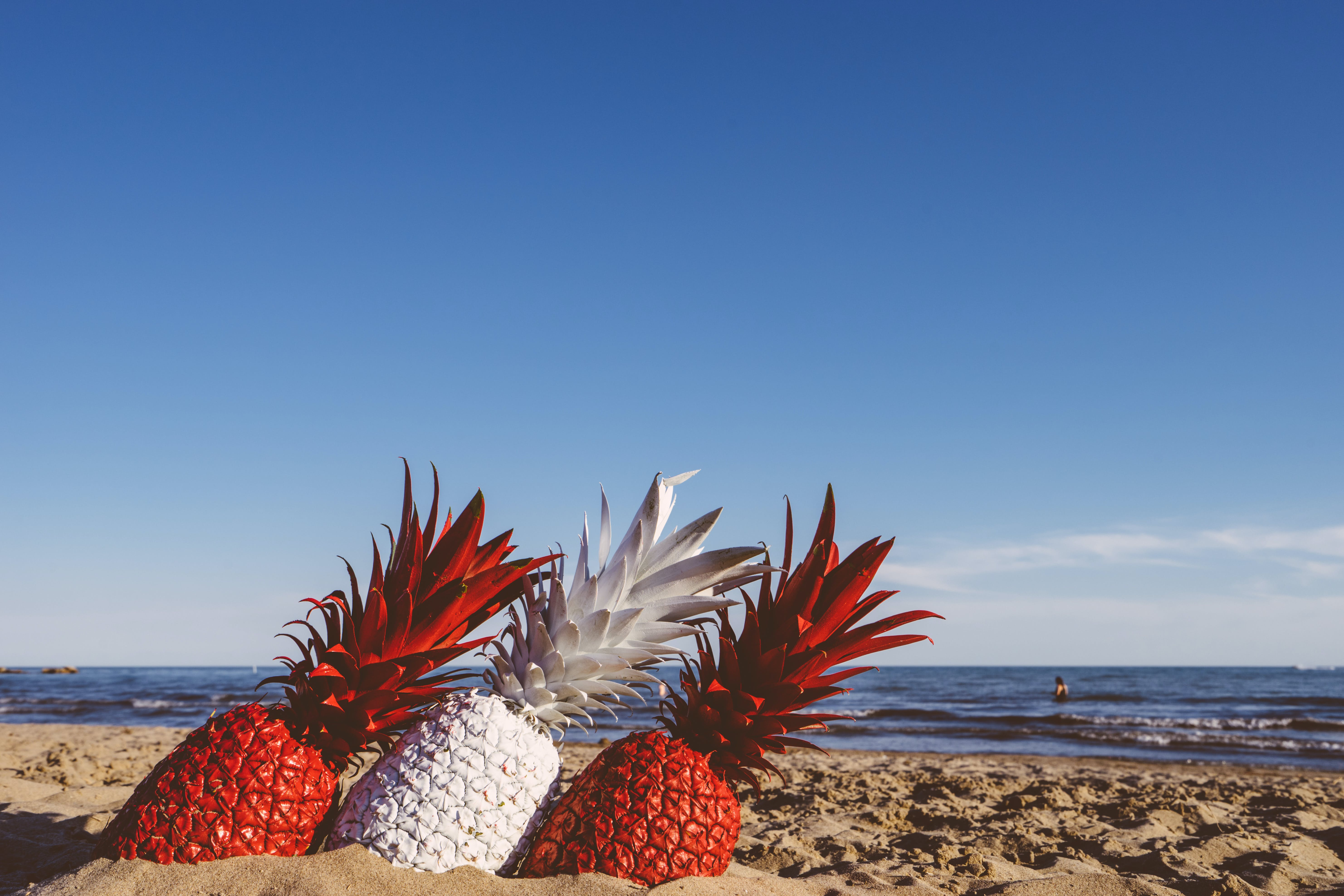 Three Red and White Pineapples on Sand