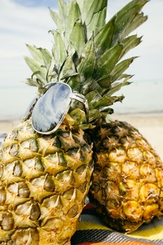 Free stock photo of food, healthy, beach, sunglasses