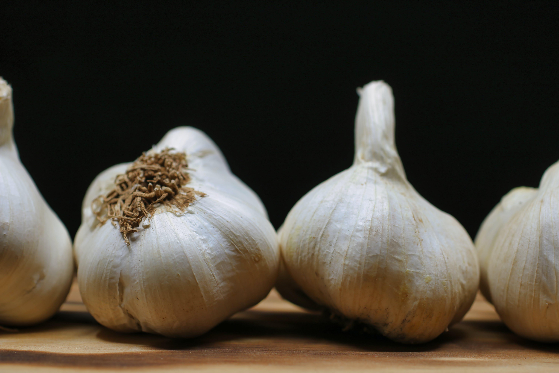 Free stock photo of white, black, clove, onion