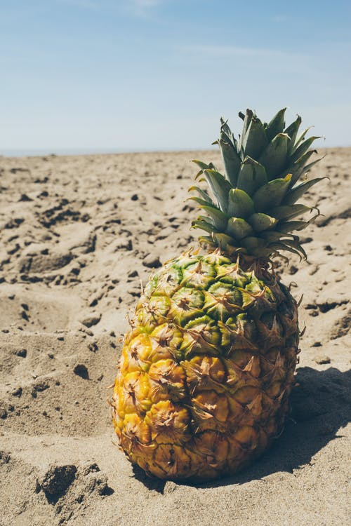 ananas, blauer himmel, dürr