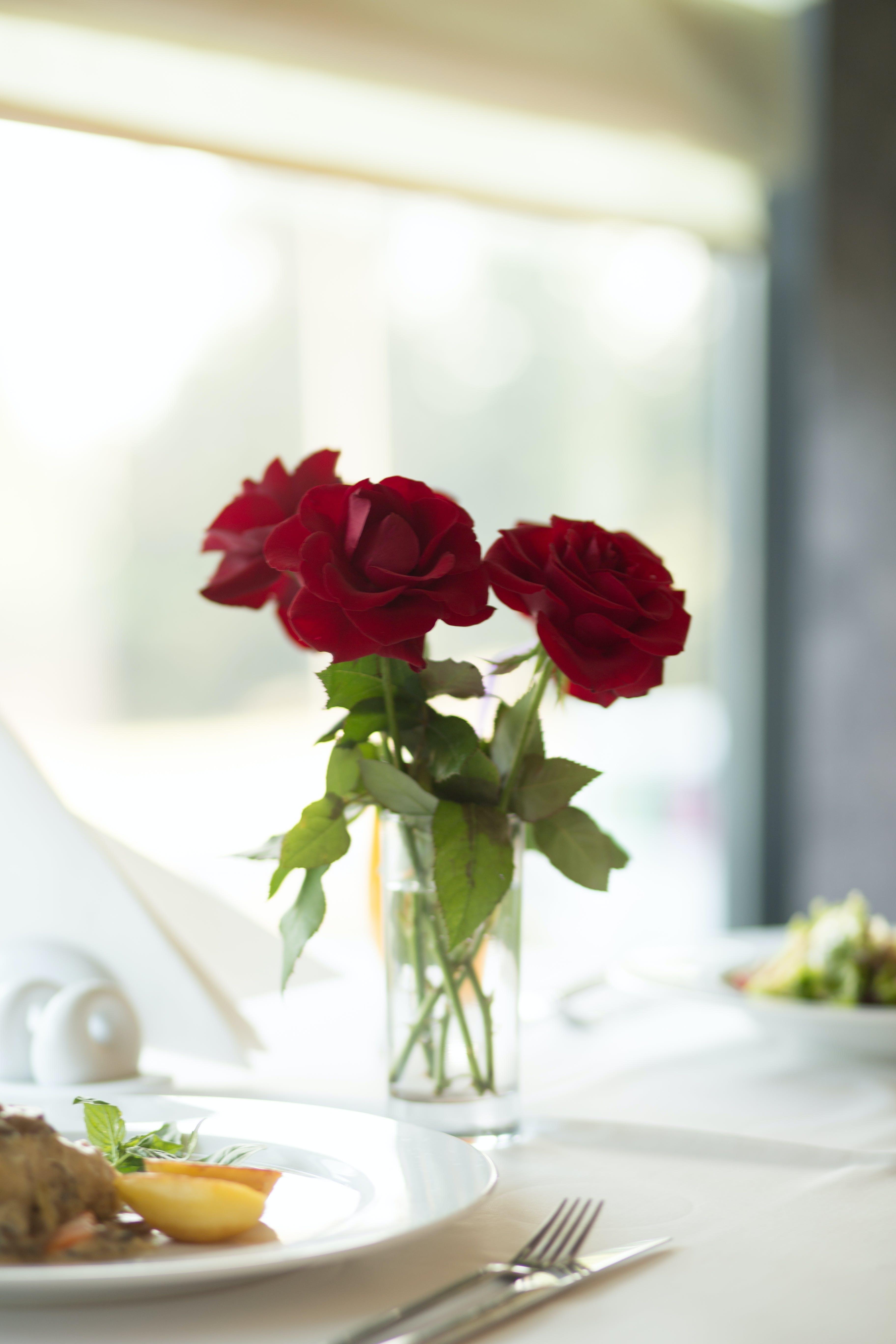 ガラス, テーブルクロス, テーブルセッティング, バラの無料の写真素材