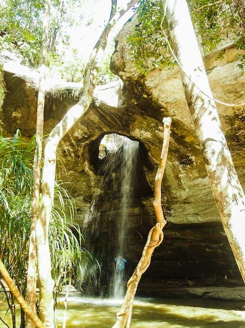 Darmowe zdjęcie z galerii z chan, drzewo, góra, kamień