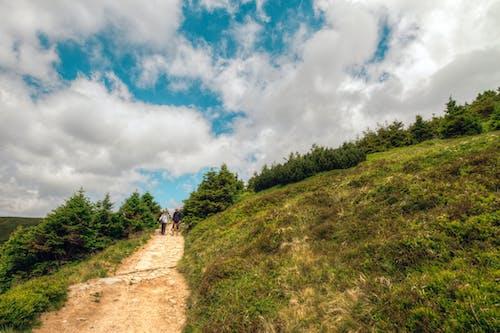 Gratis lagerfoto af bjerg, folk, grusvej, græs