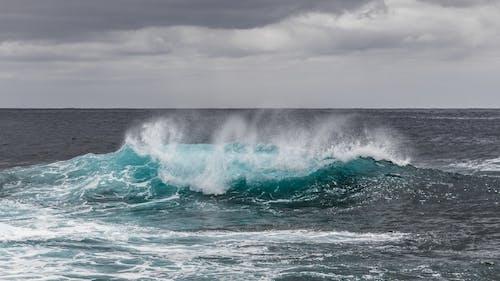 Darmowe zdjęcie z galerii z fala, machać, morze, natura