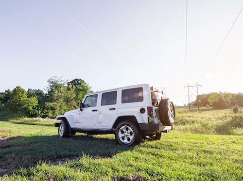 alan, araba, çevre, çim içeren Ücretsiz stok fotoğraf